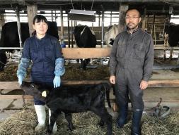 お菓子を通じて北海道の新規就農者をサポート! <br>シーキューブ酪農支援  子牛用ヒーターを贈呈